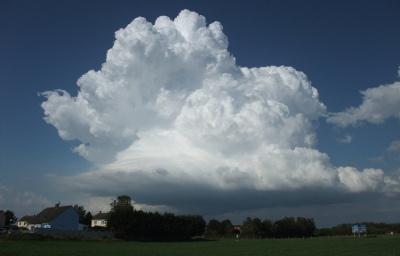 De bloemkoolvormige cumulus congestus kan fikse buien veroorzaken en mogelijk verder uitgroeien tot