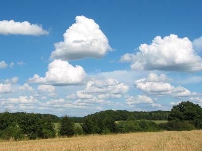 Exemple d'un cumulus médiocris.