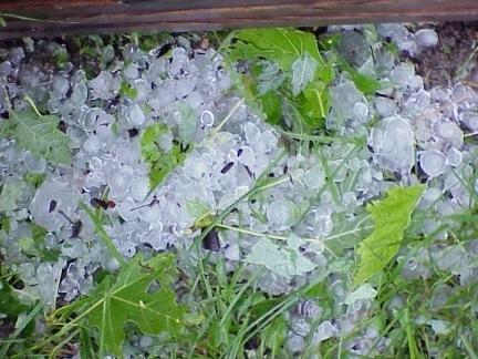 Le grésil est plus transparent que la neige roulée, mais moins visible que les granules de glace.