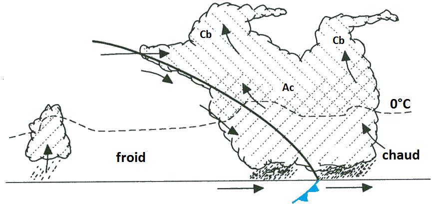Figure 2. Coupe verticale d'un front froid. La courbe noire représente la ligne de séparation en