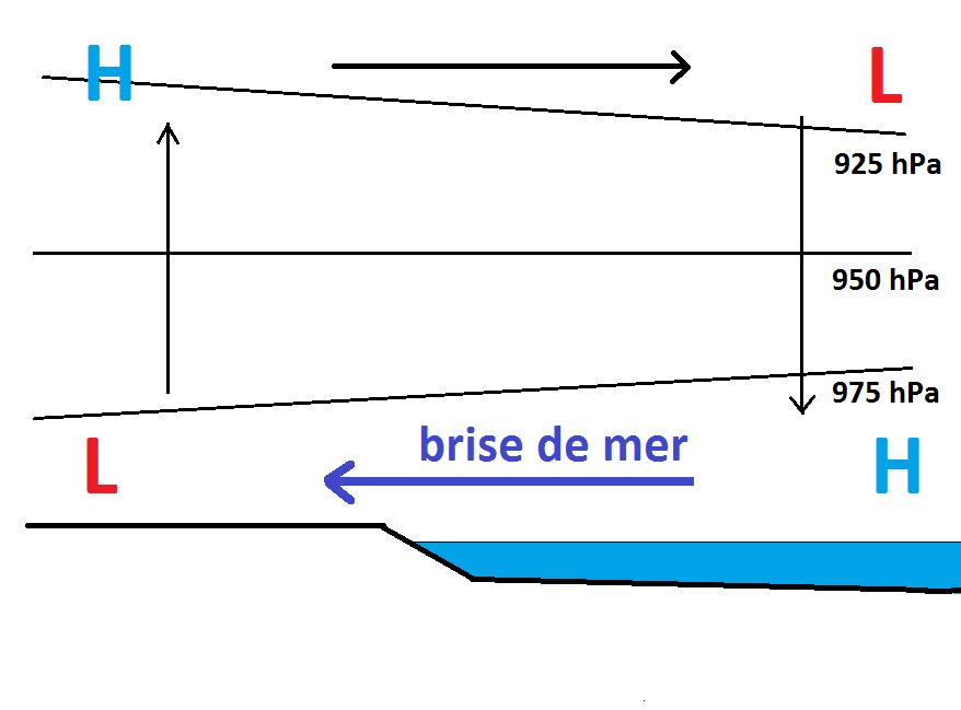Une brise de mer est créée par le réchauffement de la colonne d'air au-dessus des terres lorsqu